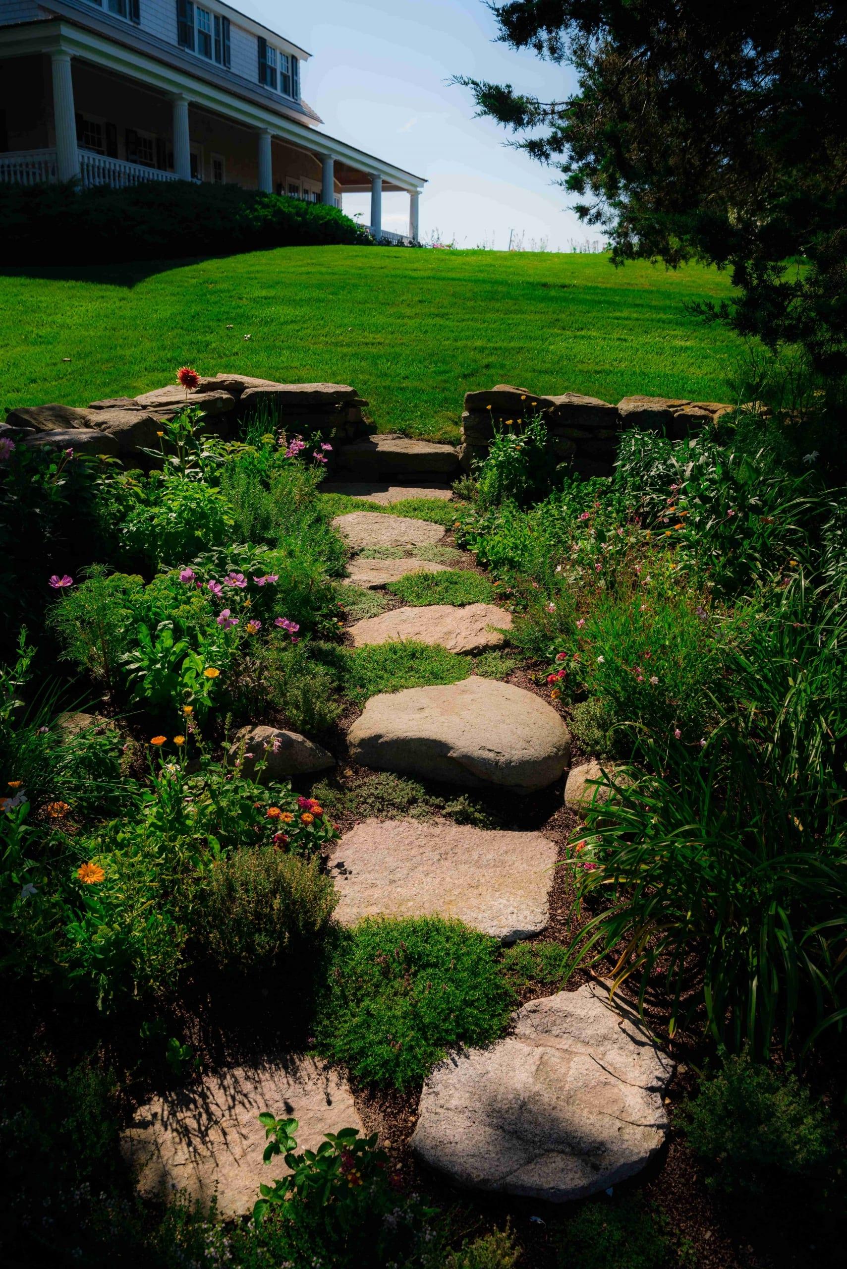 Great lawn organic